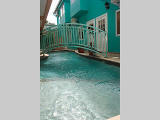Modern Crown Point Townhouse - Castara vacation rentals