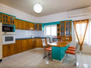 Luxury 5 rooms house with garden on sandy beach - Hadera vacation rentals