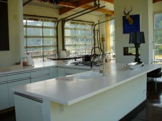 Spectacular glass house with lake views near Aspen - Basalt vacation rentals