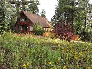 Blue Jay Vista Mountain Chalet - Pure Summer Bliss - Munds Park vacation rentals