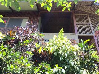 1 bedroom Cottage with Deck in Mambajao - Mambajao vacation rentals