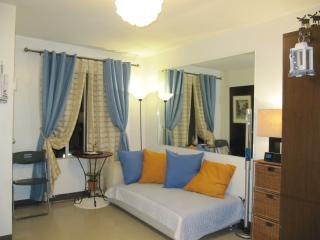Fully Furnished Big Studio Condo - Mactan Island vacation rentals