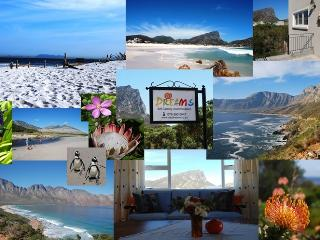 Relax at Dreams - Holiday Home 100m to Sandy Beach - Pringle Bay vacation rentals