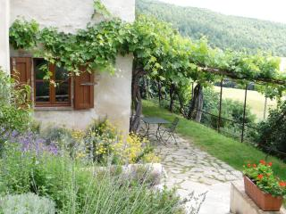Moraiolo - Assisi vacation rentals