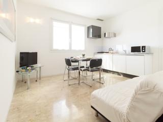 New elegant flat with big furnished terrace & park - Venice vacation rentals
