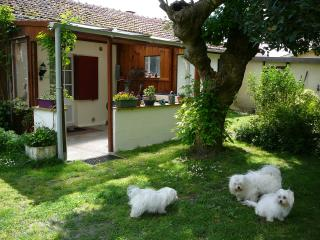 Pfauensitz, studio with garden - Parentis-en-Born vacation rentals