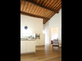 An Apartment in Lucca - Lucca vacation rentals