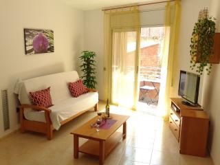 ANA VII BEACH-CITY-apartment - Lloret de Mar vacation rentals