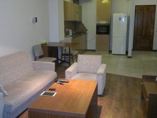 Nice Condo with Internet Access and A/C - Yerevan vacation rentals