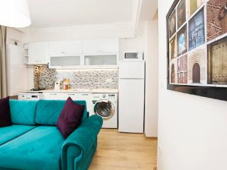 Cheaper,Cozy,Center M8 - Istanbul Province vacation rentals