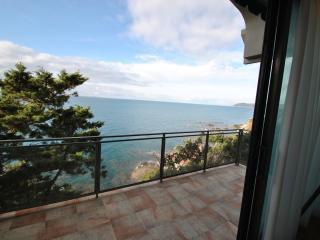 Villa a picco sul mare - Castiglioncello vacation rentals
