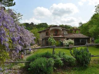 Bright 4 bedroom Mercatale di Val di Pesa Villa with Internet Access - Mercatale di Val di Pesa vacation rentals