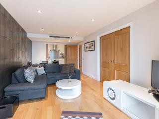 Central London 2 bed 2 bath modern apartment - London vacation rentals