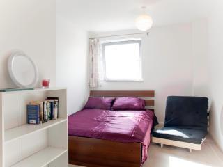 Riverview Apartment - London vacation rentals