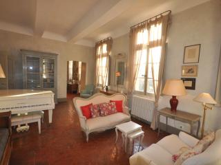 Three bedrooms apartment Maison d'Hortense - Aix-en-Provence vacation rentals