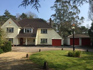 Live the Dream in a Large Bournemouth Country home - Ferndown vacation rentals