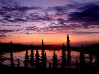 The Retreat in the Woods - Kasilof vacation rentals