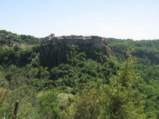 2 bedroom House with Internet Access in Calcata - Calcata vacation rentals