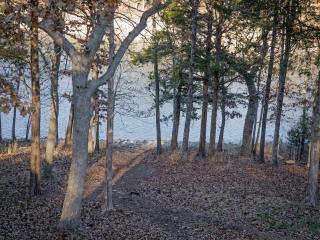 Lake Front Log Cabin15 min. to Silver Dollar City! - Kimberling City vacation rentals
