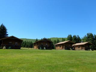 Nice Cottage with Internet Access and Wireless Internet - Margaree Forks vacation rentals