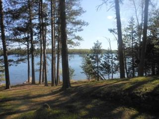 Oakwind North: Towering Pines with a Relaxing Setting at this Eagles Nest Lake - Ely vacation rentals