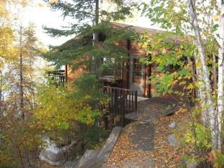 Moose Lake Cabin: Beautiful View and Direct Access to the BWCAW! - Ely vacation rentals