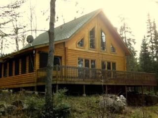 Bear Island Retreat: Great Northwoods Cabin with Modern Conveniences and End of the Road Privacy! - Ely vacation rentals