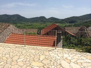 Stone house with vineyard views near Dubrovnik - Janjina vacation rentals