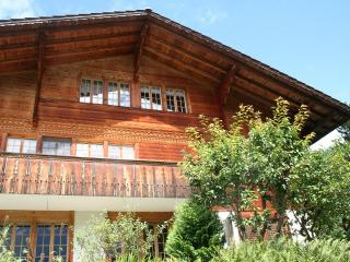 Nice Chalet with Internet Access and Wireless Internet - Frutigen vacation rentals