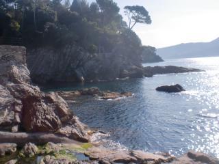 Villetta Azzurra - con accesso privato al mare - Bogliasco vacation rentals