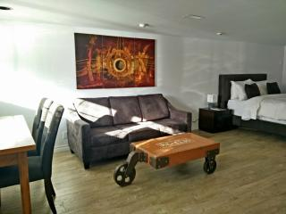 New Spacious 1br suite downtown Toronto - Ontario vacation rentals