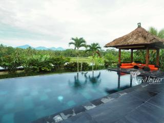 Villa Rumah Lotus Ubud luxurious,private,2 bedroom - Ubud vacation rentals