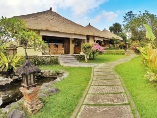 Villa Bintang - Seminyak vacation rentals