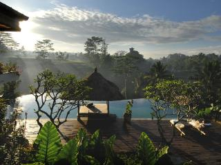 Villa Bayad, Stunning,luxurious,private 4 bedrooms - Ubud vacation rentals