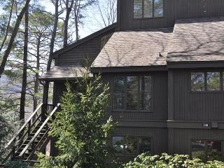 Panoramic View Condo in the Heart of Big Canoe - Big Canoe vacation rentals
