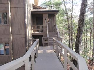 410 Condo in Big Canoe Resort - Big Canoe vacation rentals