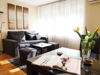 TOP CENTRAL modern 1BR Apartment in ❤ of Belgrade - Dorćol Old town - Belgrade vacation rentals