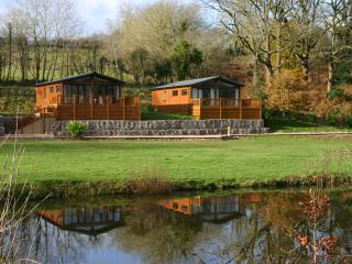 Nice Lodge with Television and Water Views - Dunkeswell vacation rentals