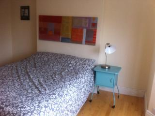 Spectre - Design Friendly Family Home - Sleeps 12 - Dublin vacation rentals