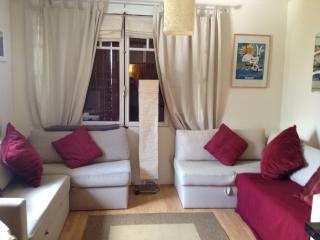 Morzine Apartment - Morzine-Avoriaz vacation rentals