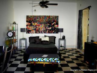 BNB La Pantera Negra Black and White - Merida vacation rentals
