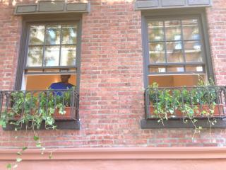 Manhattan Soho/Greenwhich Village 3 bdrm Duplex - New York City vacation rentals