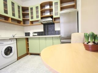 Cozy 1 room flat in center of Vilnius - Vilnius vacation rentals
