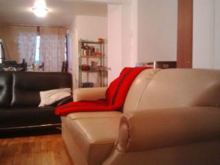 Beautiful apartment , near to the metro - Montreal vacation rentals