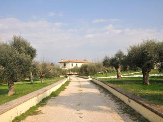'A Casa di Zia' just outside Rome! - Zagarolo vacation rentals