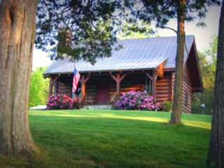 Virginia Log Cabin - Image 1 - Natural Bridge - rentals