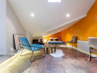 La Capucine - Studio design - Lyon - Saone river - Lyon vacation rentals