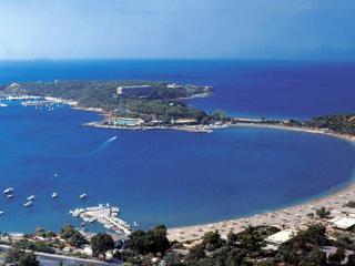 Athens.Coast.Voula.SeaView. LUXURY VILLA-Slps 5 - Voula vacation rentals
