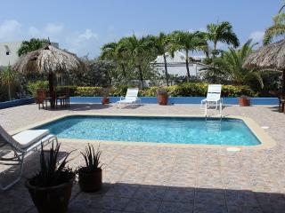 A Beautiful Aruba Salina Cerca Villa - ID:39 - Aruba vacation rentals