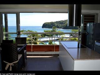 1 bedroom Condo with Dishwasher in Mahina - Mahina vacation rentals